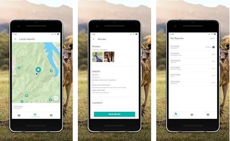 Wildlfie App screens