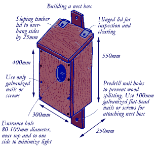 Possum nesting boxes should have a sloping timber roof, hinged lid for inspection, galvanised nails or screws, an entrance hole 80 - 100mm in diameter. It should be 550mm high, 250mm deep and 300mm wide.